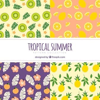 Colección de patrones decorativos de verano con frutas