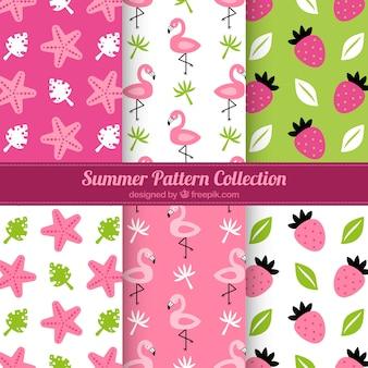 Colección de patrones rosas de verano
