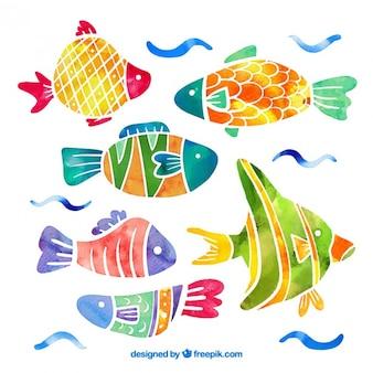 Colección de peces en efecto acuarela