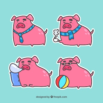 Colección de pegatinas de cerdo