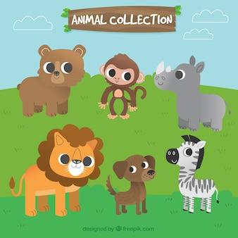Colección de personajes de animales adorables