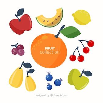 Colección de piezas de frutas de colores