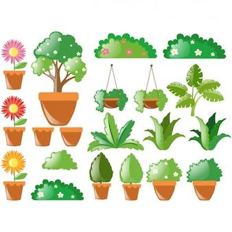 Colección de plantas a color