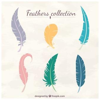 Colección de plumas de colores