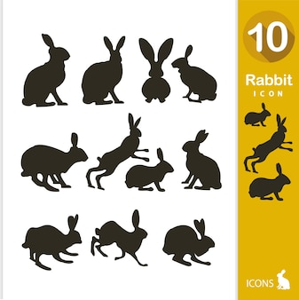 Colección de siluetas de conejos