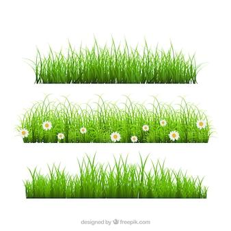 Colección de tres bordes de hierba realistas