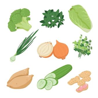 Colección de verduras a color