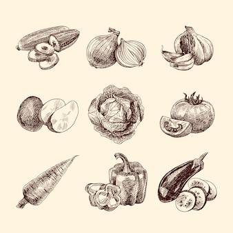 Colección de verduras bocetadas