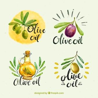 Colección fantástica de cuatro pegatinas de aceite de oliva en estilo de acuarela