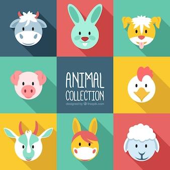 Colección plana de animales de granja