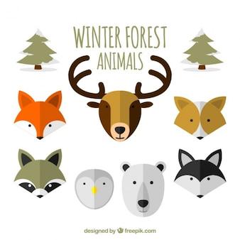 Colección plana de animales del bosque de invierno