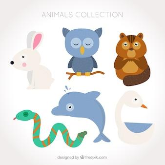 Colección plana de animales lindos