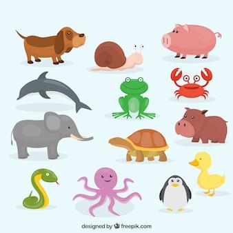 Colección plana de animales