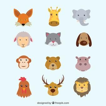 Colección plana de cabezas de animales