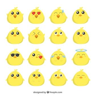 Colección plana de emoticonos de polluelo divertido