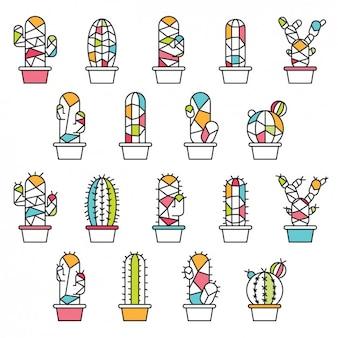 Collección de cactus trazados