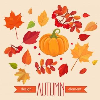 Color de hojas de otoño y calabaza.