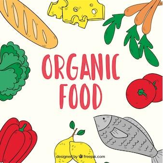 Comida orgánica, fondo dibujado a mano