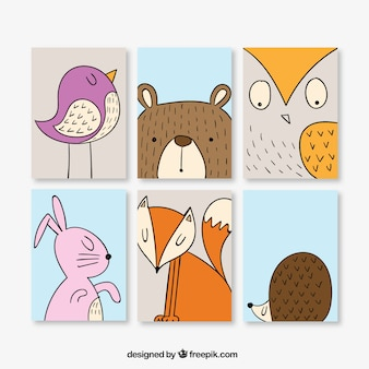 Conjunto de bonitas tarjetas de animales dibujados a mano