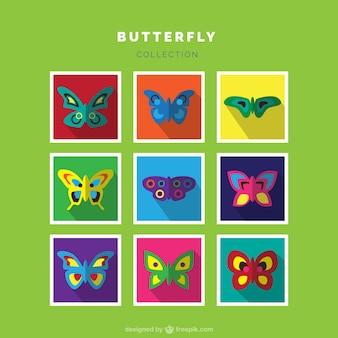 Conjunto de diferentes tipos de mariposas coloridas
