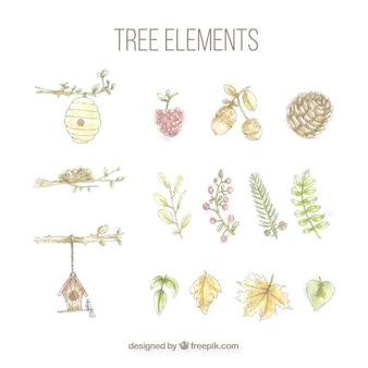 Conjunto de elementos del árbol pintados con acuarelas