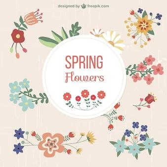 Conjunto de elementos gráficos florales