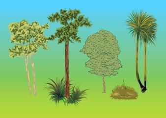 Conjunto de vectores árboles