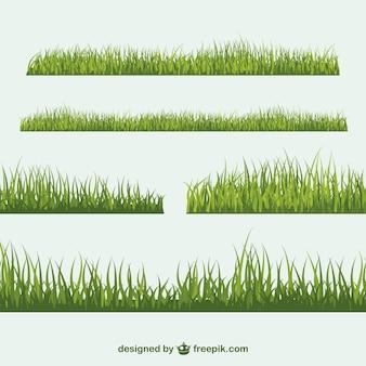 Conjunto de vectores de hierba