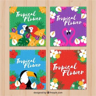 Cuatro tarjetas tropicales con pájaros exóticos