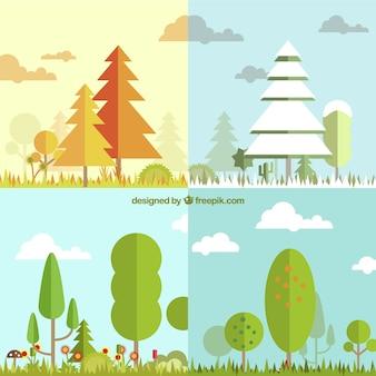 Cuatro temporadas con paisaje de árboles