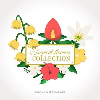 Decoración de flores tropicales