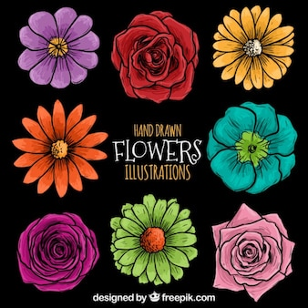 Dibujadas a mano ilustración de flores