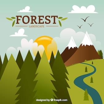dibujadas a mano paisaje hermoso bosque