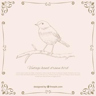 Dibujado a mano pájaro vintage