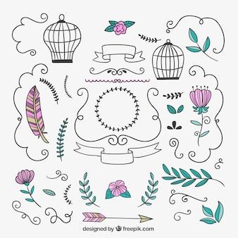 Dibujado ornamentos florales y decoraciones