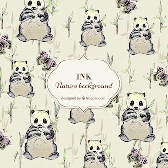 Dibujados a mano de fondo pandas