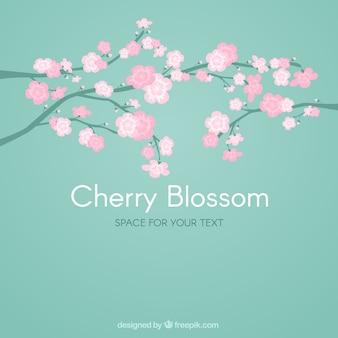 dibujados a mano ramas lindo con el fondo de la flor de cerezo