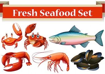 Diferentes tipos de mariscos frescos ilustración