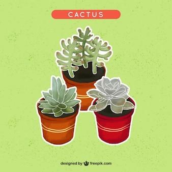 Diseño de cactus en acuarela