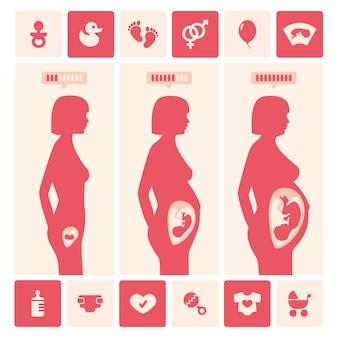 Diseño de evolución de mujer embarazada
