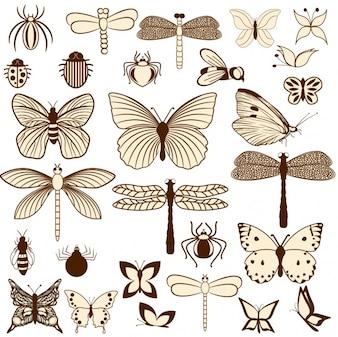 Diseño de insectos