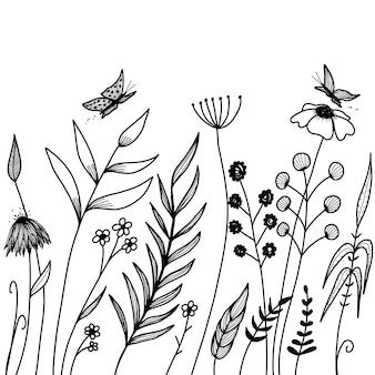 Diseño de plantas dibujadas a mano