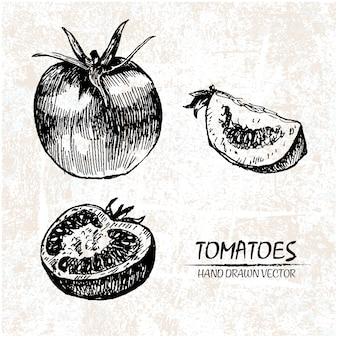 Diseño de tomate dibujado a mano