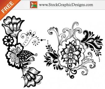 Diseños de flores hermosas gratis vectoriales