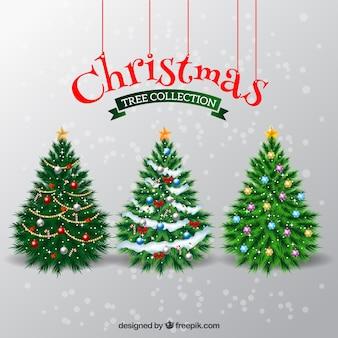 Elegantes árboles de navidad
