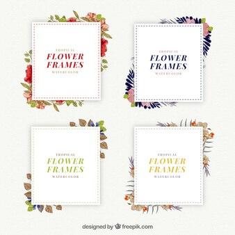 Elegantes marcos con detalles florales