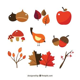 Elementos bonitos de otoño