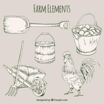 Elementos de granja dibujados a mano y gallo