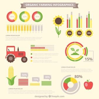 Elementos de Infografía de infografía orgánica