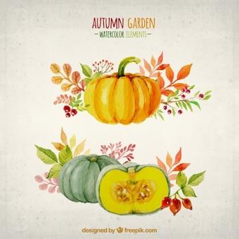 Elementos de la acuarela del jardín de otoño
